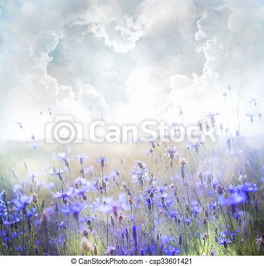 champ, fleurs - csp33601421