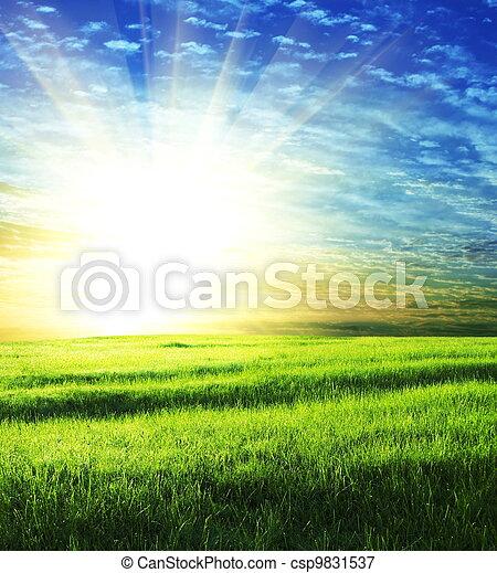 champ, levers de soleil - csp9831537