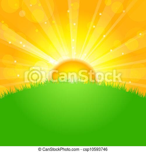 champ, sur, levers de soleil - csp10593746