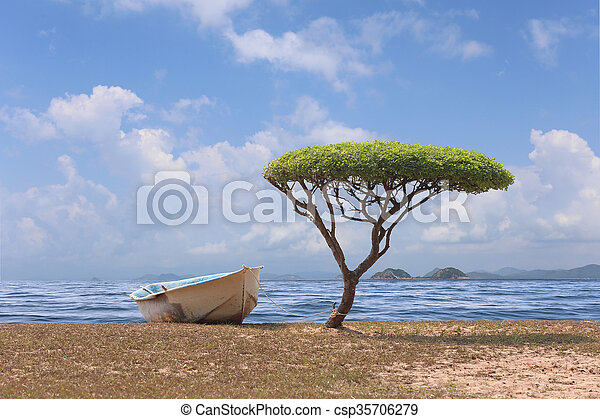 champignon, formé, arbre, une, day., clair, temps, mer, bateau - csp35706279
