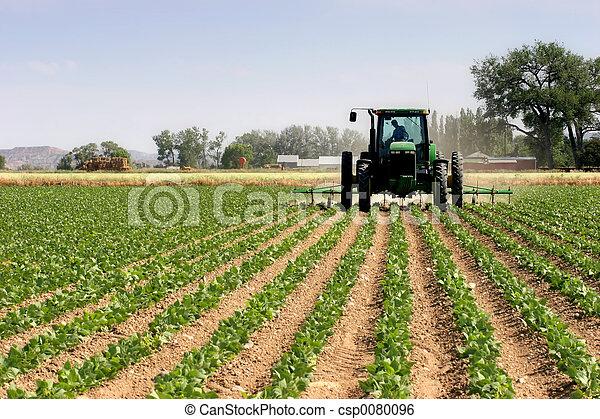 champs, labourer, tracteur - csp0080096