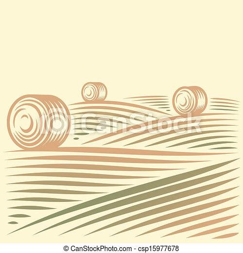 champs, meules foin, paysage - csp15977678