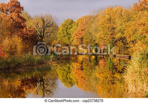 channel et autumn forest - csp23738279