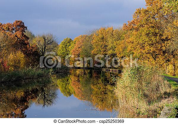 channel et autumn forest - csp25250369