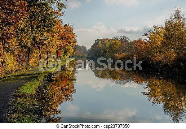 channel et autumn forest - csp23737350