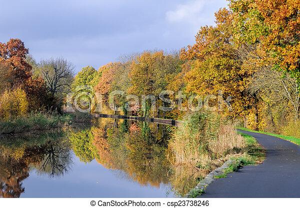 channel et autumn forest - csp23738246