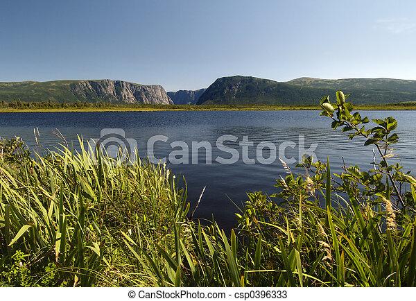Al estanque del oeste del arroyo - csp0396333
