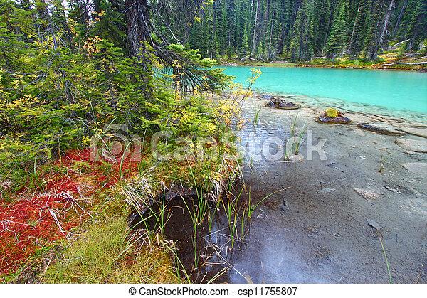 El estanque del parque nacional Yoho - csp11755807