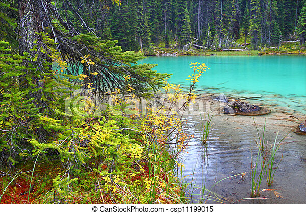 El estanque del parque nacional Yoho - csp11199015