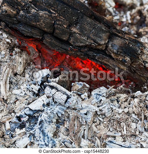 Ash And Fire Art