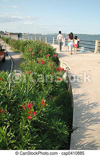Charleston Battery - csp0410885