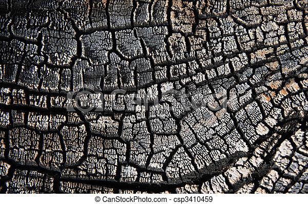 Charred wood - csp3410459