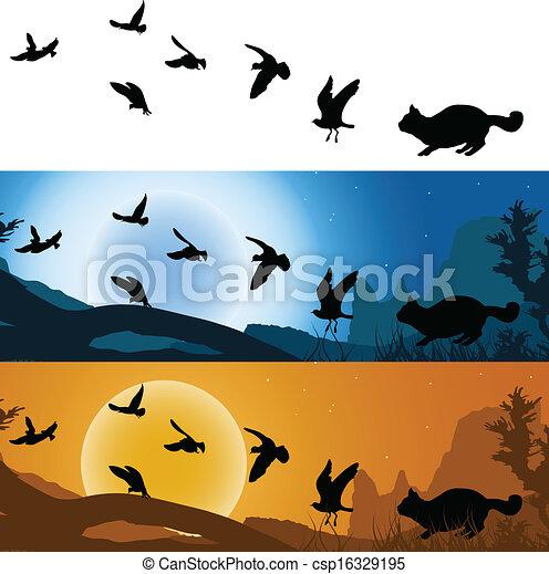 chat, coucher soleil, chasseur, oiseaux - csp16329195