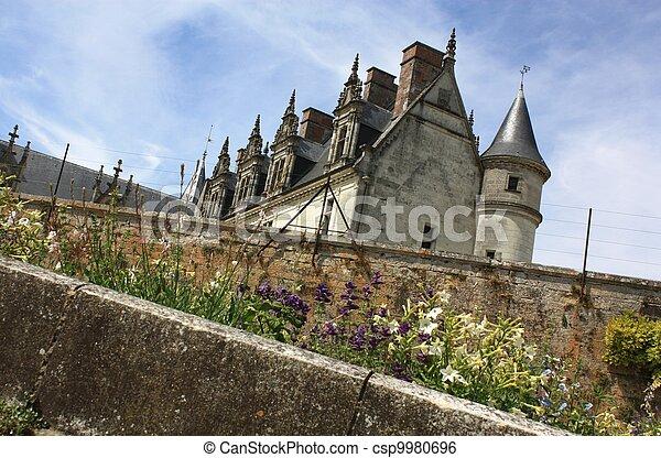 Chateau de Amboise. Loire. France - csp9980696