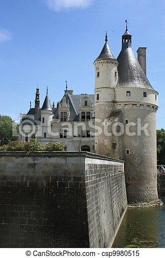 Chateau de Chenonceau. Loire. - csp9980515