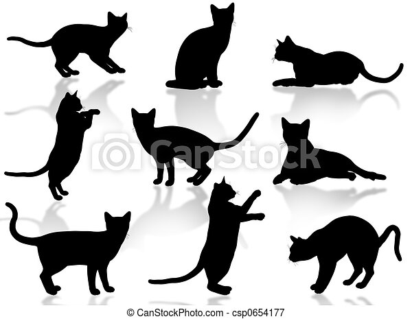 chats, silhouette - csp0654177