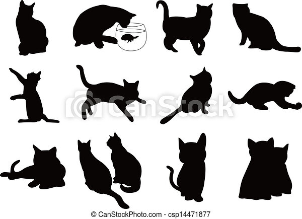 chats, silhouette, illustration - csp14471877