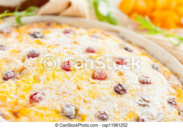 Cheese casserole with cranberries and raisins close-up - csp11961252