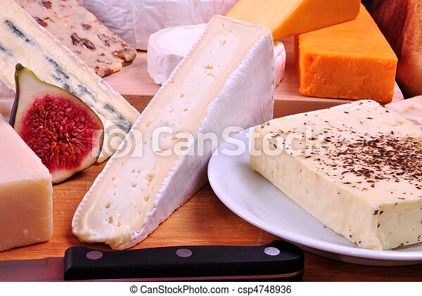 cheese platter with some organic fresh cheese - csp4748936