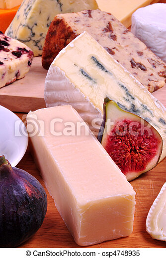 cheese platter with some organic fresh cheese - csp4748935