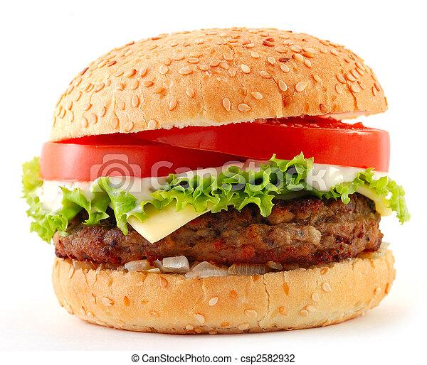 cheeseburger - csp2582932