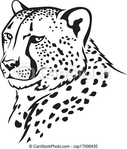 Cheetah muzzle - csp17008435