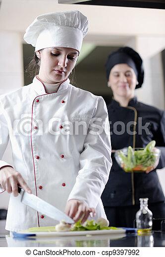 Chef preparando la comida - csp9397992