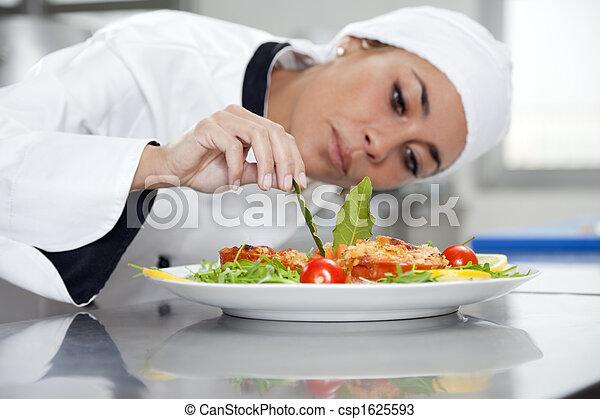 chef - csp1625593