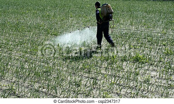 Chemical human application, onion fields - csp2347317