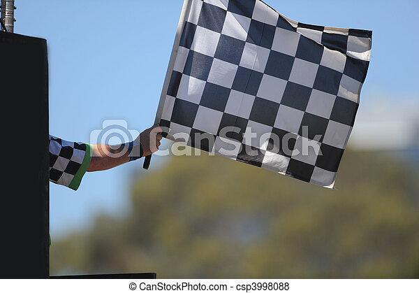 Chequered Flag - csp3998088