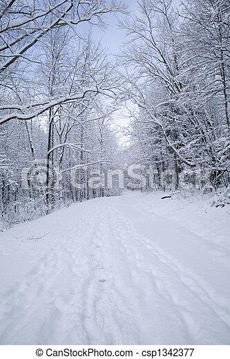 Cherokee Orchard Rd, Snow, Gatlinburg, TN - csp1342377
