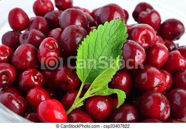 Cherries and Lemon balm leaf 1 - csp33407822