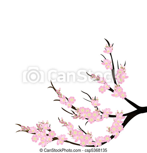 cherry blossom branch over white background stock illustrations rh canstockphoto com cherry blossom clipart free cherry blossom clipart png