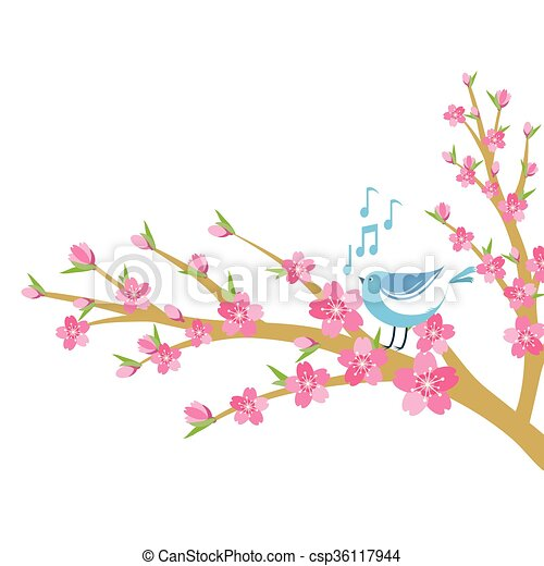 cherry blossom branch with bird and music notes cherry eps rh canstockphoto com