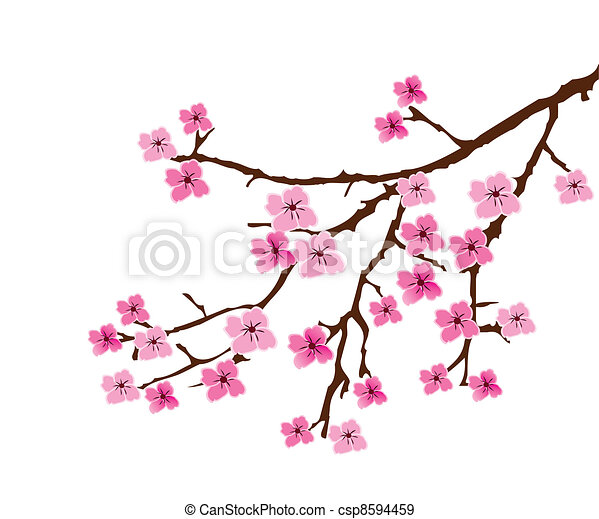 cherry blossom vector blossom branch rh canstockphoto com cherry blossom clipart free cherry blossom clip art free to download
