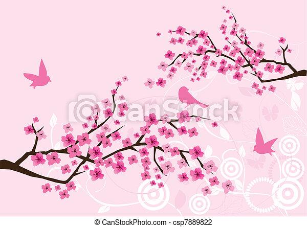 Cherry blossom - csp7889822