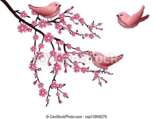 Cherry blossom - csp13906279