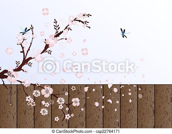 cherry blossom - csp22764171