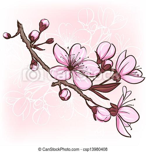 Cherry blossom - csp13980408