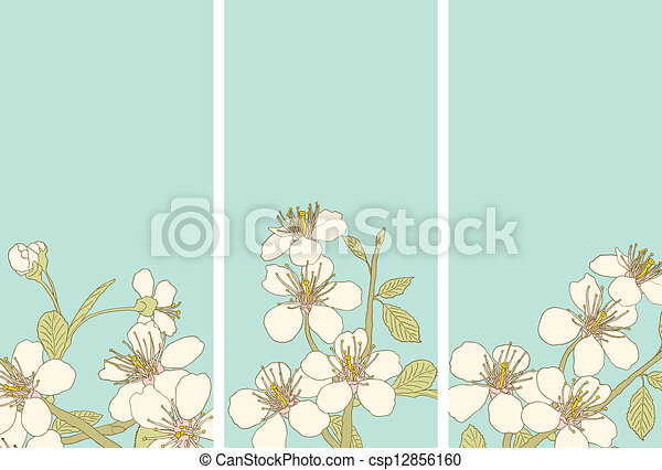 Cherry blossoms - csp12856160