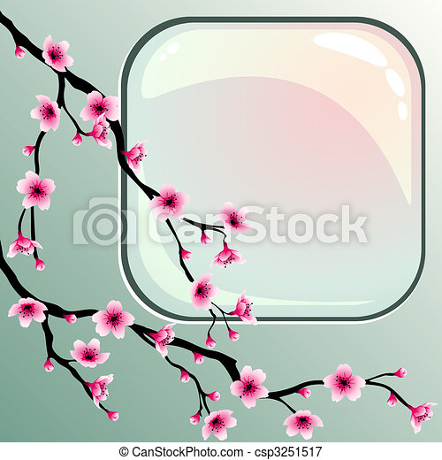 Cherry blossoms - csp3251517