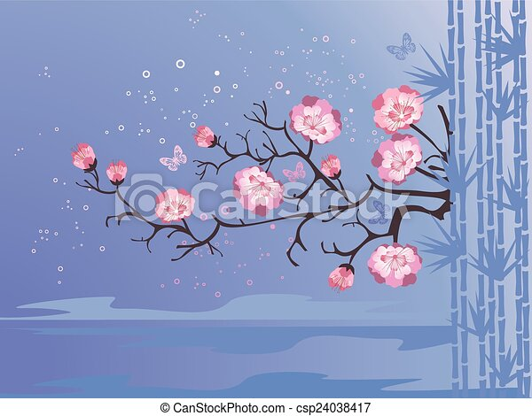 cherry blossoms - csp24038417