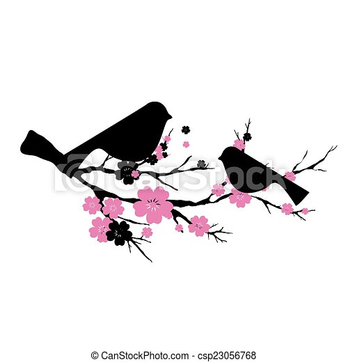 cherry branch - csp23056768