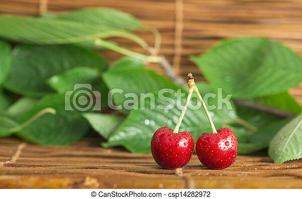 Cherry branch with leaves - csp14282972