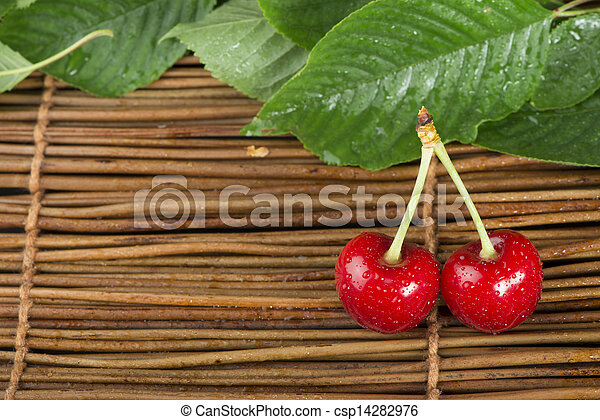 Cherry branch with leaves - csp14282976