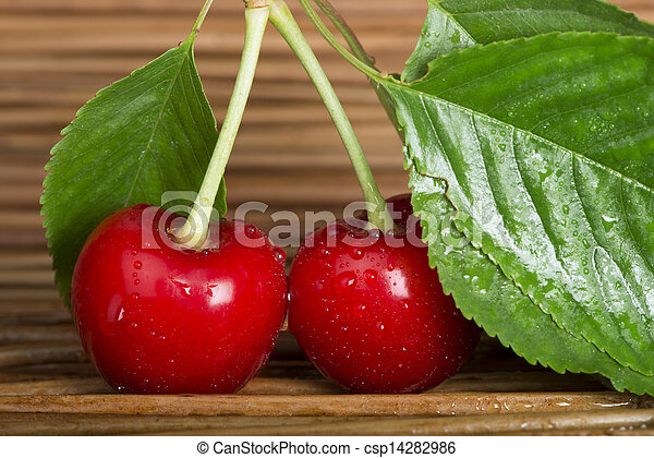 Cherry branch with leaves - csp14282986
