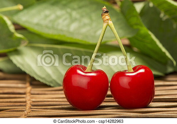 Cherry branch with leaves - csp14282963
