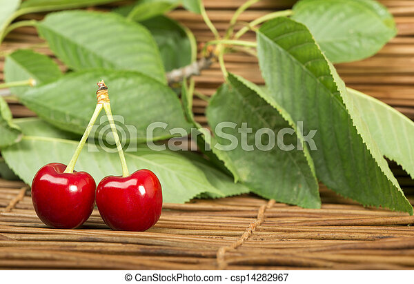 Cherry branch with leaves - csp14282967