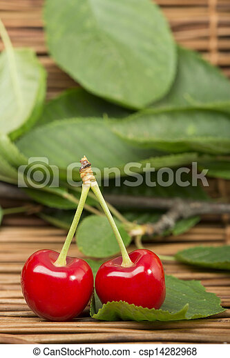Cherry branch with leaves - csp14282968