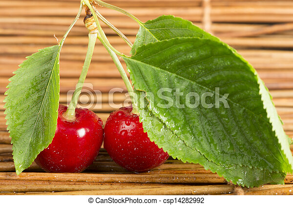 Cherry branch with leaves - csp14282992
